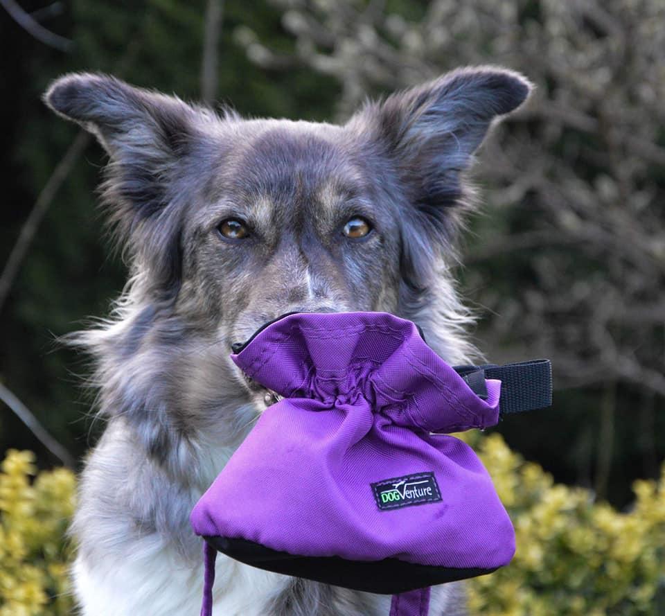 Saszetka na przysmaki dla psa