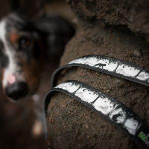 Smycz dla psa Silver Night