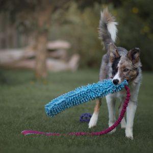 Szarpak dla psa Crazy Mop Long