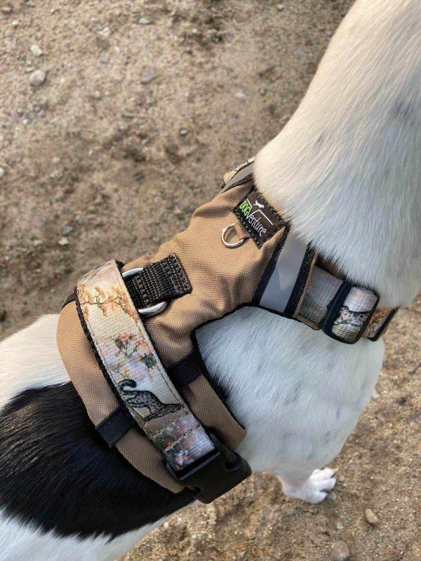 Szelki dla psa z rączką
