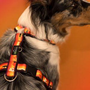 Szelki dla psa Guard DogVenture