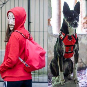 Zestaw dla psa Red Gang